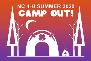 4-H 2020 Virtual Summer Camp