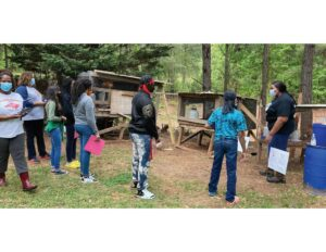 Cover photo for Anson Youth Leaders Farm Tour