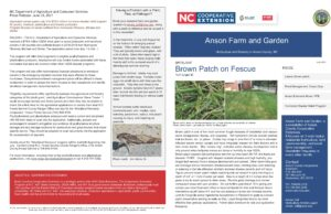 Cover photo for Anson Farm and Garden Newsletter - Horticulture and Forestry in Anson County, NC