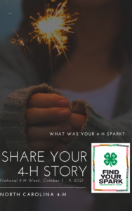 Close Up of Girl holding Sparkler as background. Asking for 4-H Alumni to share their 4-H Story about how they found their Spark in 4-H.